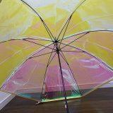オーロラ傘はどこに売っている?